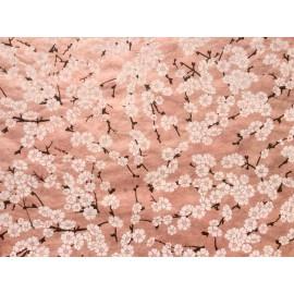Branches de cerisier blanc sur rose