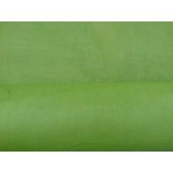 Népalais enduit froissé vert moyen