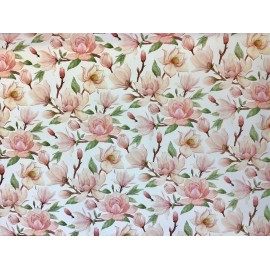 Branches de magnolia en rose