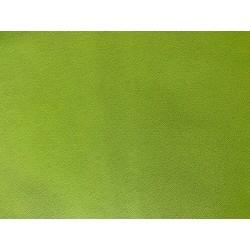 Cherbourg vert