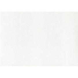 Pellaq lézard blanc