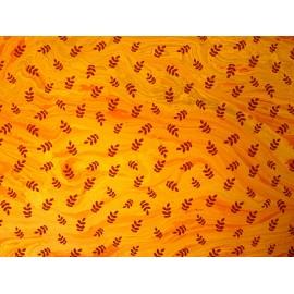Acacia sur fond marbré orange