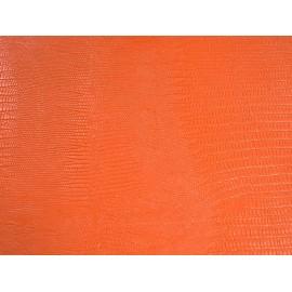 Téjus orange