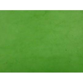 Népalais vert salade